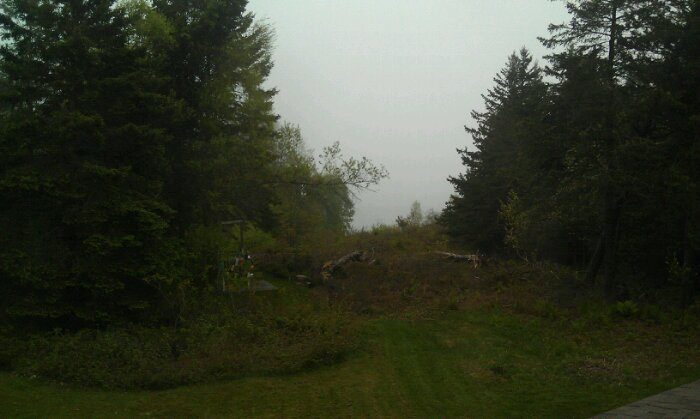 Fog on Boston Island