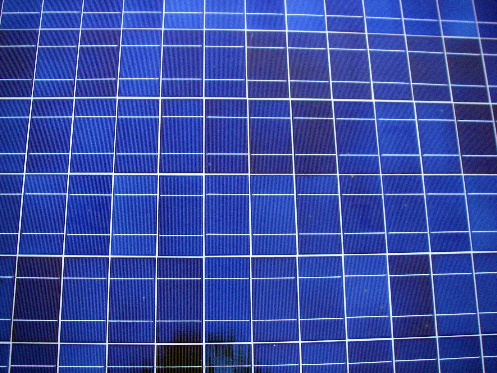 Photovoltaic cells up close
