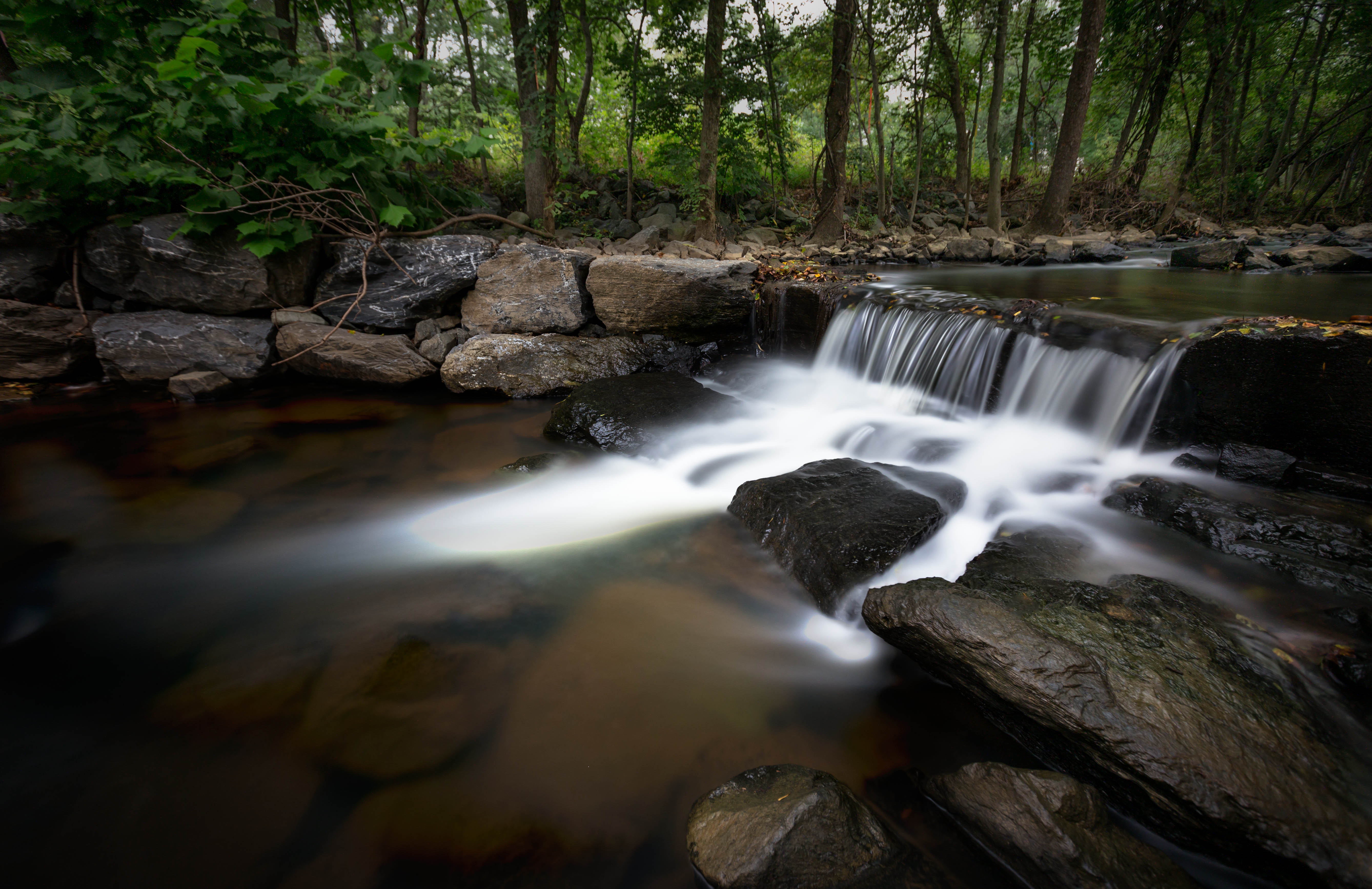 College Park creek by Andy Feliciotti